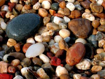 Deniz kabukları ve taşlar taşlar karadeniz lütfen bekleyiniz